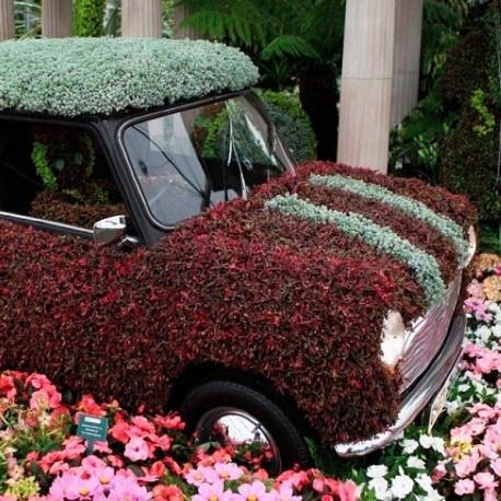 98_56 Украшение на автомобиль цветы