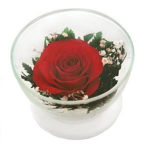 05_02 Цветы в стекле ~ вакуум*~