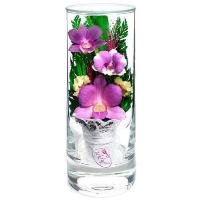 12_15 Цветы в стекле! ~ вакуум ~