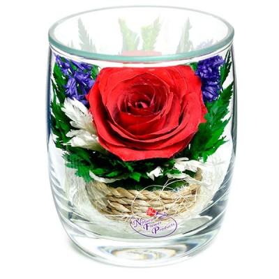 05_10 Цветы в стекле ~ вакуум*~
