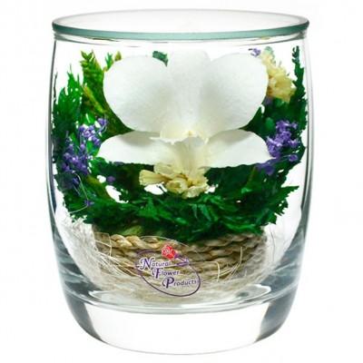 05_15 Цветы в стекле ~ вакуум*~