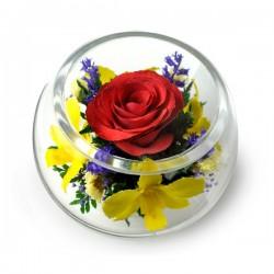 03_24 Цветы в стекле ~ вакуум*~