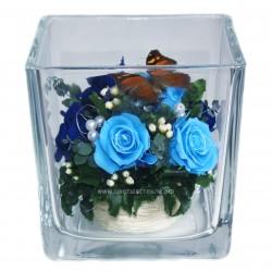 99_84 Бабочка на розах