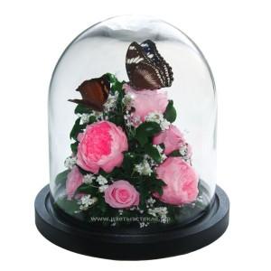 99_29 Композиция с бабочками