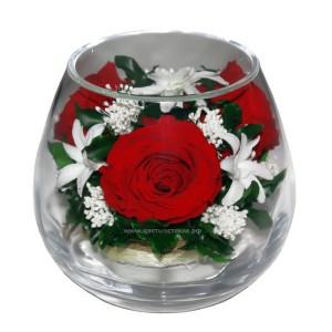 99_16 Роза, Наринэ, питоспорум зелень