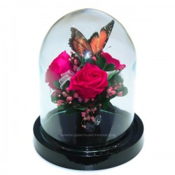 Розы в колбе с бабочкой