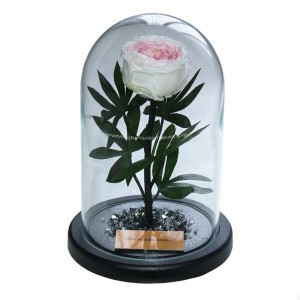99_30 Пион на стебле в стеклянной колбе