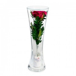12_30 роза в колбе