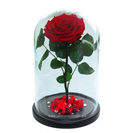 99_33 Роза в колбе (любой цвет на выбор)