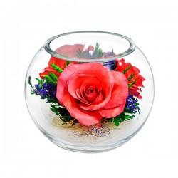 03_31Цветы в стекле ~ вакуум*~