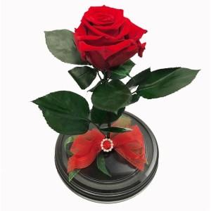 99_37 Роза в колбе (любой цвет на выбор)