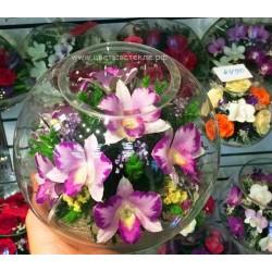 Орхидеи в стекле ~ вакуум*~