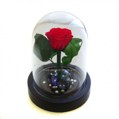 99_35 Роза в колбе