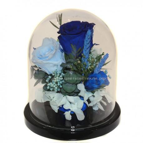 Ярко-синие и голубые розы