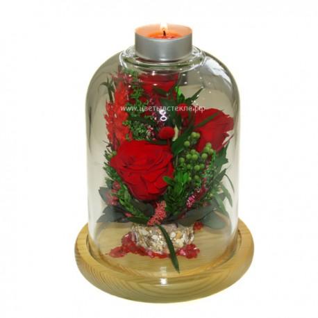 99_20 натуральные цветы в стекле