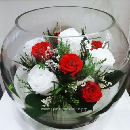 99_19 розы, зелень