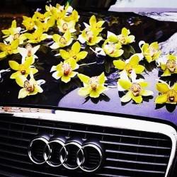 98_54 Украшение на автомобиль орхидеи