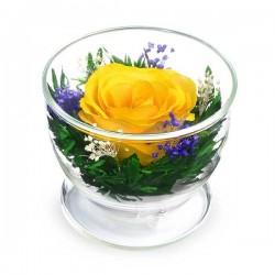 05_05 Цветы в стекле ~ вакуум*~
