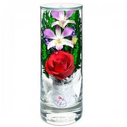 12_27 Цветы в стекле! ~ вакуум ~