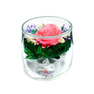 05_24 Цветы в стекле ~ вакуум*~