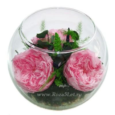 99_10 цветы в стекле, роза, гардения