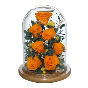 99_22 Розы, Эвкалипт хрустальный