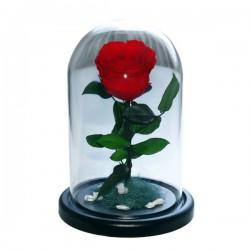 99_34 Роза в колбе (любой цвет на выбор)
