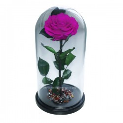 99_37 Премиум Роза в колбе