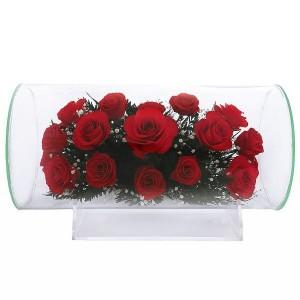 11_01 Цветы в стекле ~ вакуум ~
